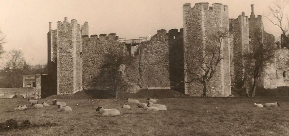 Castle Meadow