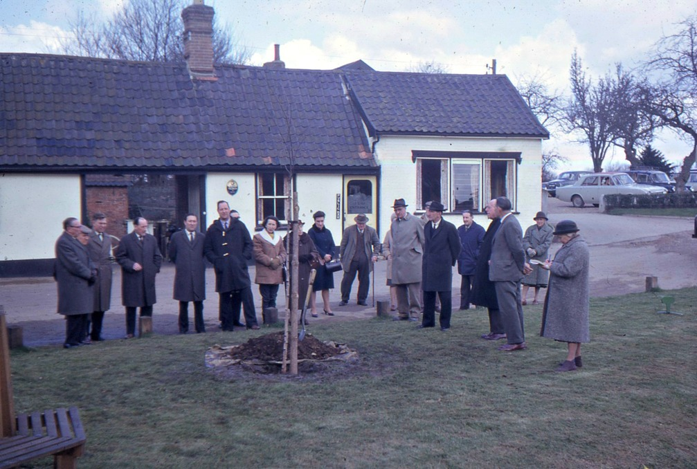 Castle pond tree planting