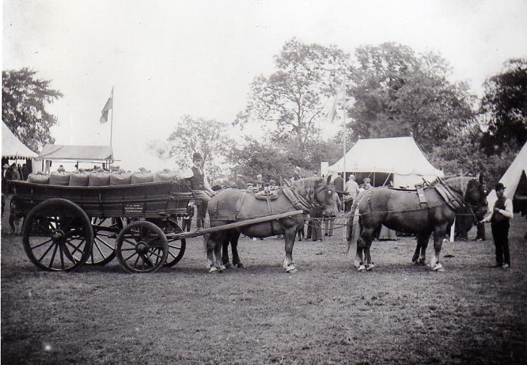 Horse Show. 1903