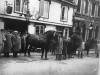 Framlingham Heavy Horse Society