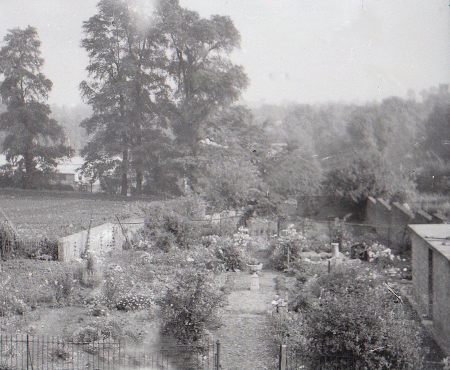 The garden opposite