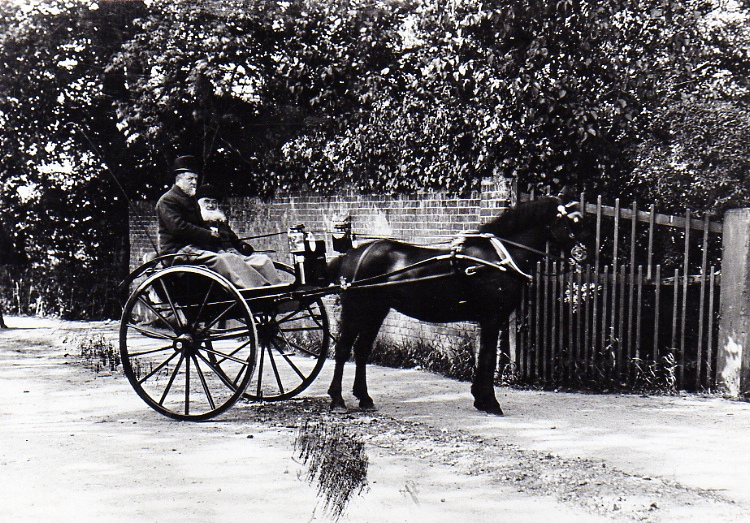 Horse And Trap, Fairfield House