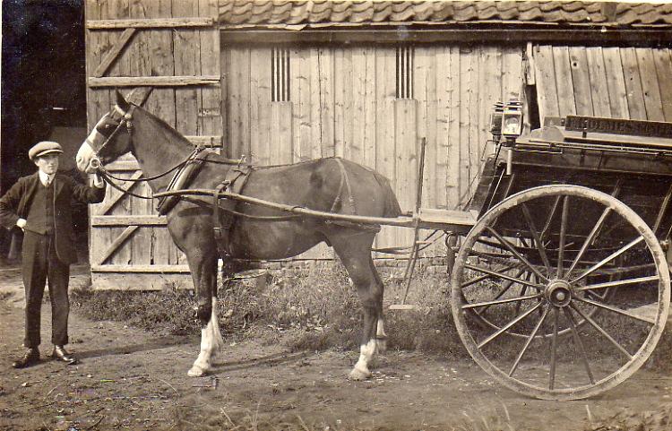 Holmes Bakery Cart