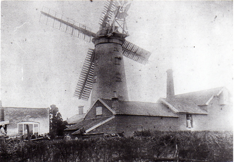 Tower Mill, Victoria Mill Road, c.1890